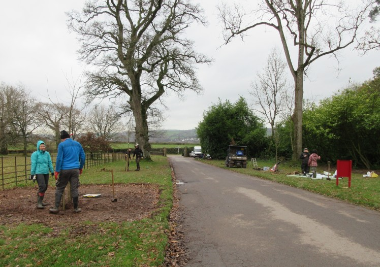 Planting at Knightshayes on Tiverton Tree Day, October 30th 2019